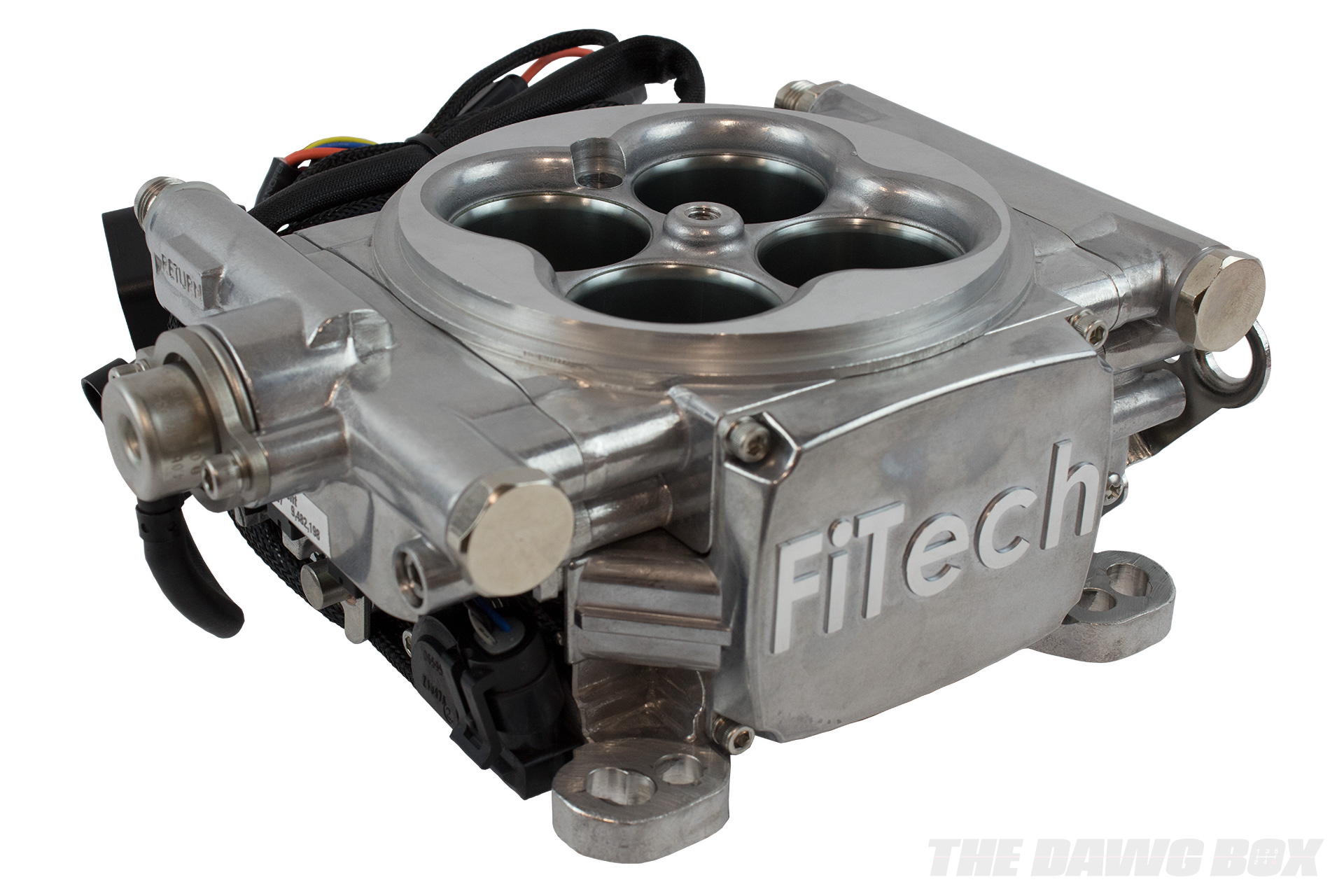 EFI system from FiTech