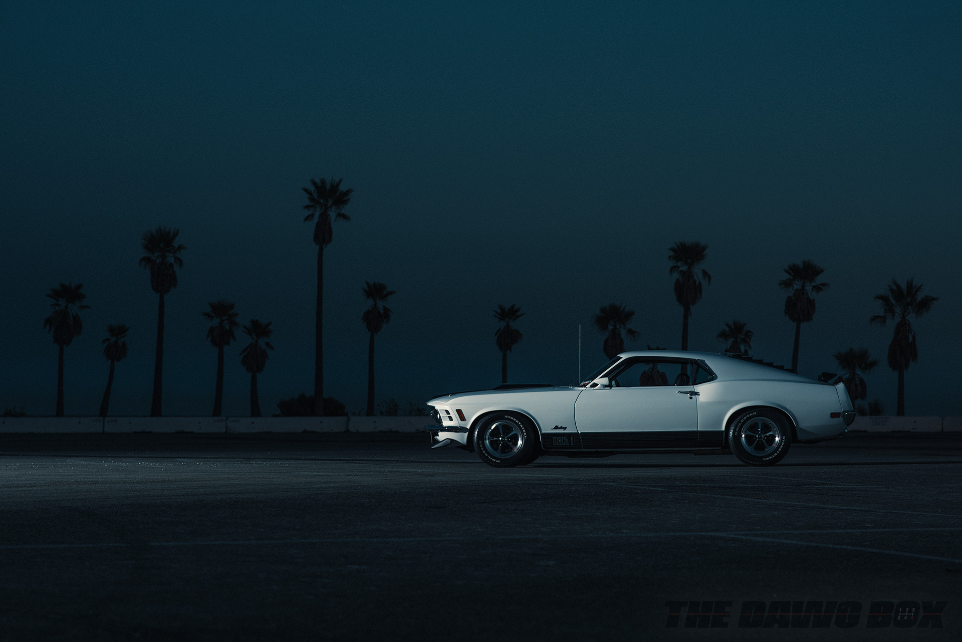 Night shot of the White 1970 Mustang Mach 1 with palm trees in the background